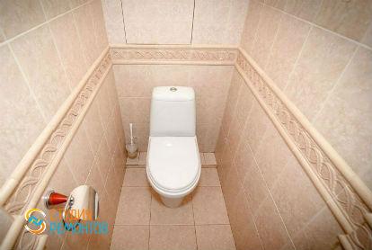 Капитальный ремонт туалета 2,5 кв.м.