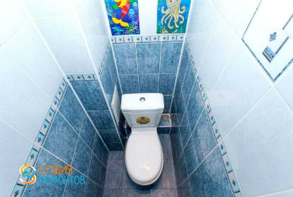 Косметический ремонт туалета 1,5 кв.м.