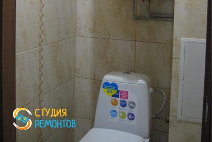 Косметический ремонт туалета в трехкомнатной квартире 61,4 кв.м.
